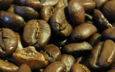 The Daily Grind With Grindstone Coffeeology